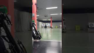 Guillotine x crossbow with lazer dot 185lb draw 400fps