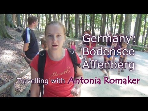 Travelling: Germany - Bodensee 2, Affenberg (monkey mountain)
