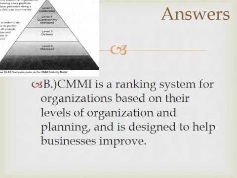 IT Systems in Organizations Quiz Video