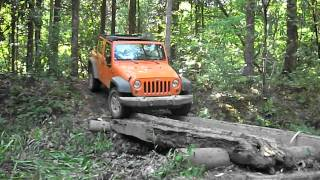 Jeeping Across The Log Bridge.