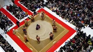 大阪駅前グランフロント大阪で開催された相撲イベント「うめきた場所in...