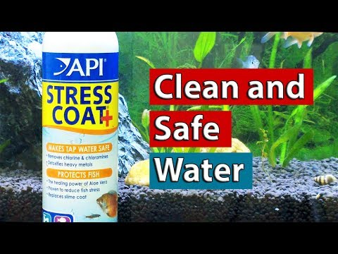 Best Water Treatment Solutions For Aquariums