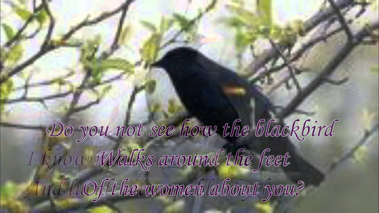 Thirteen ways of looking at a blackbird by wallace stevens read thirteen ways of looking at a blackbird by wallace stevens read by tom obedlam buycottarizona