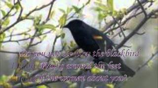 """Thirteen Ways of Looking at a Blackbird"" by Wallace Stevens (read by Tom O"