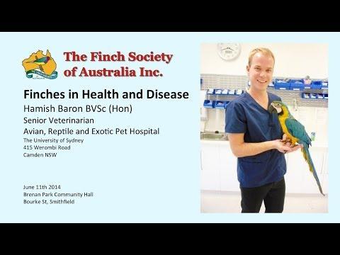 Finches in Health and Disease - Hamish Baron BVSc (Hon)