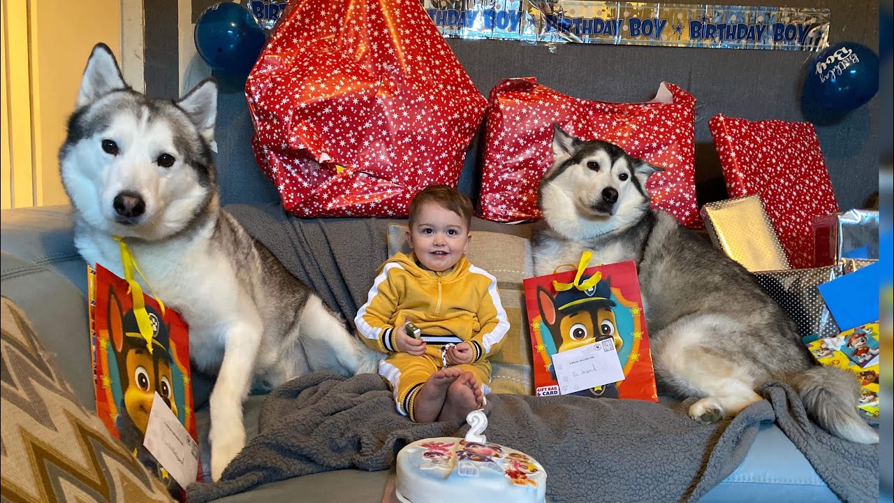 HAPPY 2ND BIRTHDAY PARKER!! [SPECIAL!!!]