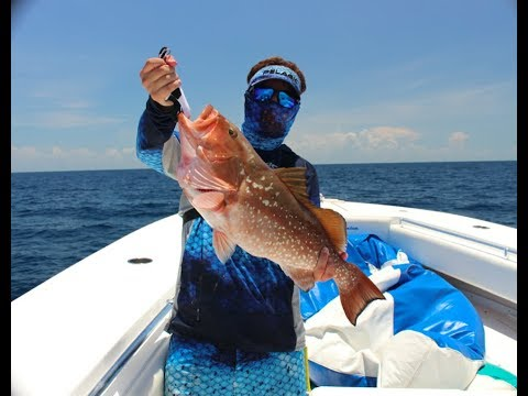 Offshore fishing action in the Gulf of Mexico(Naples Florida