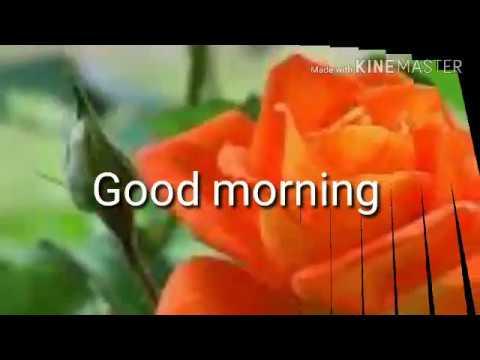 Good Morning With Santali Song