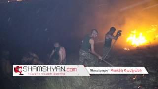 Արտակարգ իրավիճակ Վայոց Ձորի մարզում  Արտավան գյուղի անտառները կրակի են մատնվել