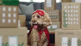 John Lewis Pet Insurance   Your sidekick