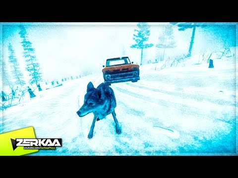ATTACKED BY WOLVES! (Kona #3)