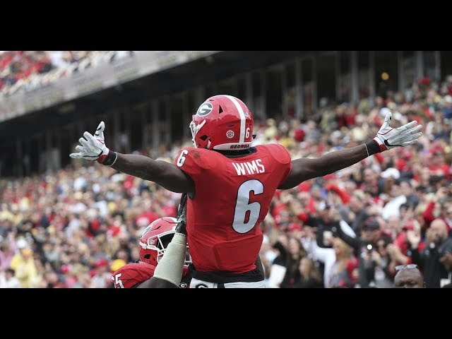 Javon Wims: What to know about the Chicago Bears receiver ...