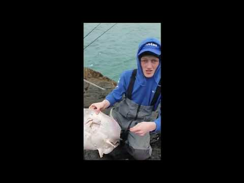 Ty Croes Ray Fishing Anglesey