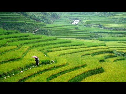 Sapa , Vietnam