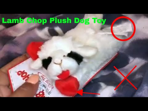 ✅-how-to-use-lamb-chop-plush-dog-toy-review