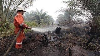 видео Смог от индонезийских пожаров угрожает Малайзии и Сингапуру