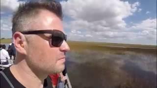 Szukamy krokodyla - Paranienormalni