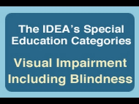 The IDEA's Special Education Categories: Visual Imapirment Including Blindess