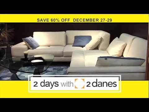 2 Days with 2 Danes Furniture Sale - Nashville TN  - Murphy Beds - American Leather - Ekornes -