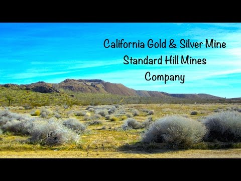 "California Gold & Silver Mines  "" Standard Hill Mines """