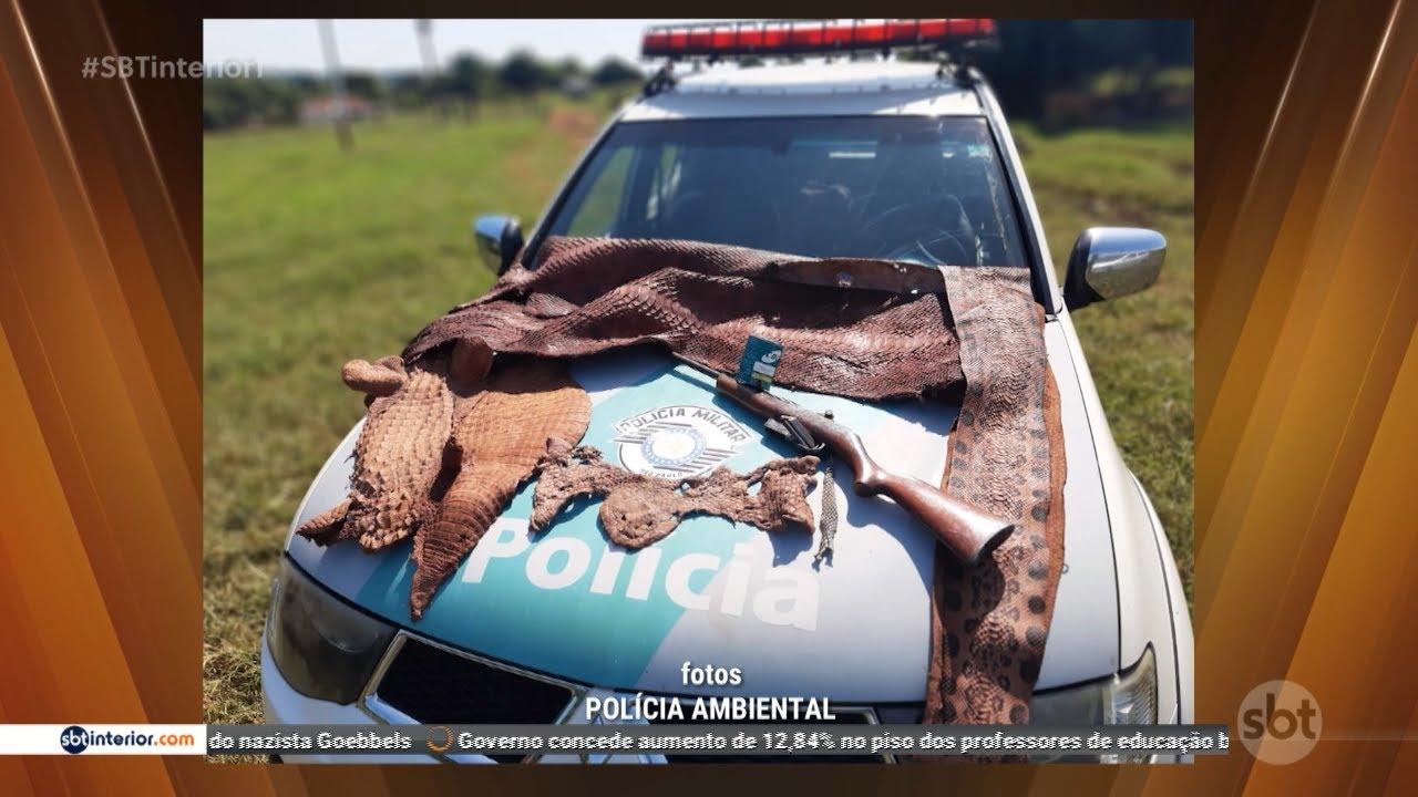 Polícia Ambiental apreende couro de cobra e animais silvestres; homem é multado em R$ 7,5 mil