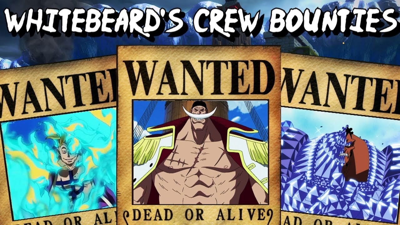 One Piece - Whitebeard's Crew Bounties - Predictions - YouTube