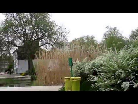 PARIS: Country Walk in the Parc de Bercy