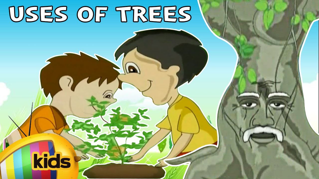 uses of trees essay for kids