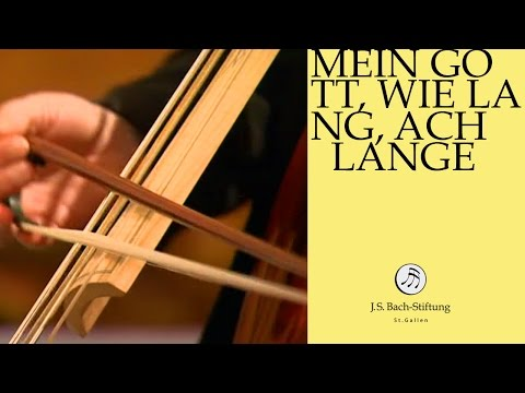 J.S. Bach - Cantata BWV 155 Mein Gott, wie lang, ach lange | 4 Aria (J. S. Bach Foundation)