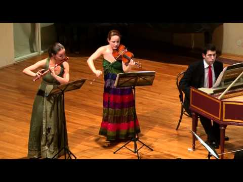 J.S.Bach - Brandenburg Concerto No.5 in D BWV1050 - Croatian Baroque Ensemble