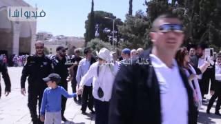 بالفيديو: مستوطنون يقتحمون باحات المسجد الأقصى بحماية من شرطة الاحتلال