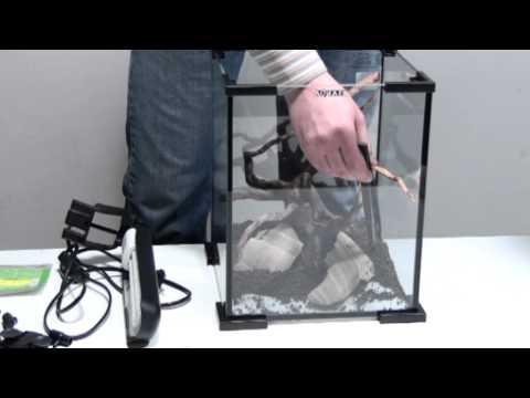 Aquael Shrimpset Zakładanie Akwarium Youtube