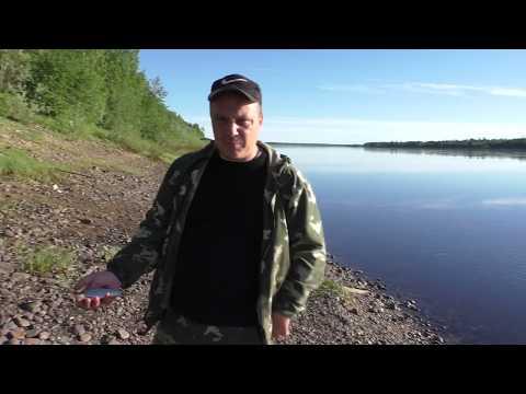 летняя рыбалка на карпа - 2018-07-04 06:43:41