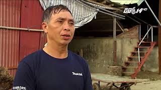 VTC14 | Nam Định: ô nhiễm môi trường từ hoạt động sản xuất giấy