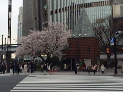 JAPANTRIP「Sukiyabashi Crossing 銀座数寄屋橋交差点」Chuo -ku, Tokyo 2015.4.1