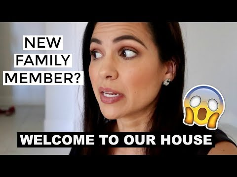 NEW FAMILY MEMBER ???  || STAY AT HOME MOM VLOG 2018 || Style Mom XO