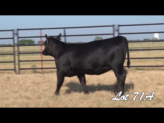 Pollard Farms Lot 71A