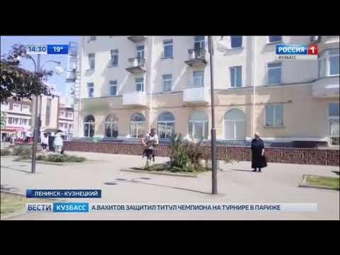 В Ленинске Кузнецком неизвестные спилили елки в центре города