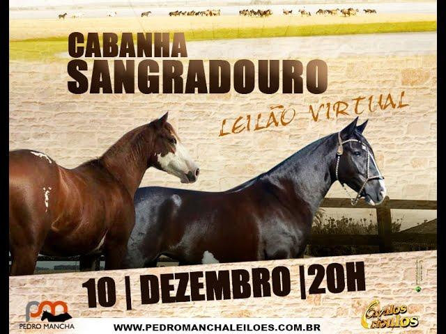 LEILÃO VIRTUAL CABANHA SANGRADOURO