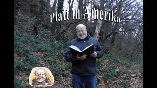 Platt in Amerika