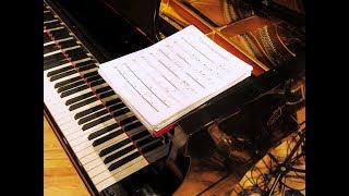 Fenômeno Estranho | Brazilian Jazz | MPB