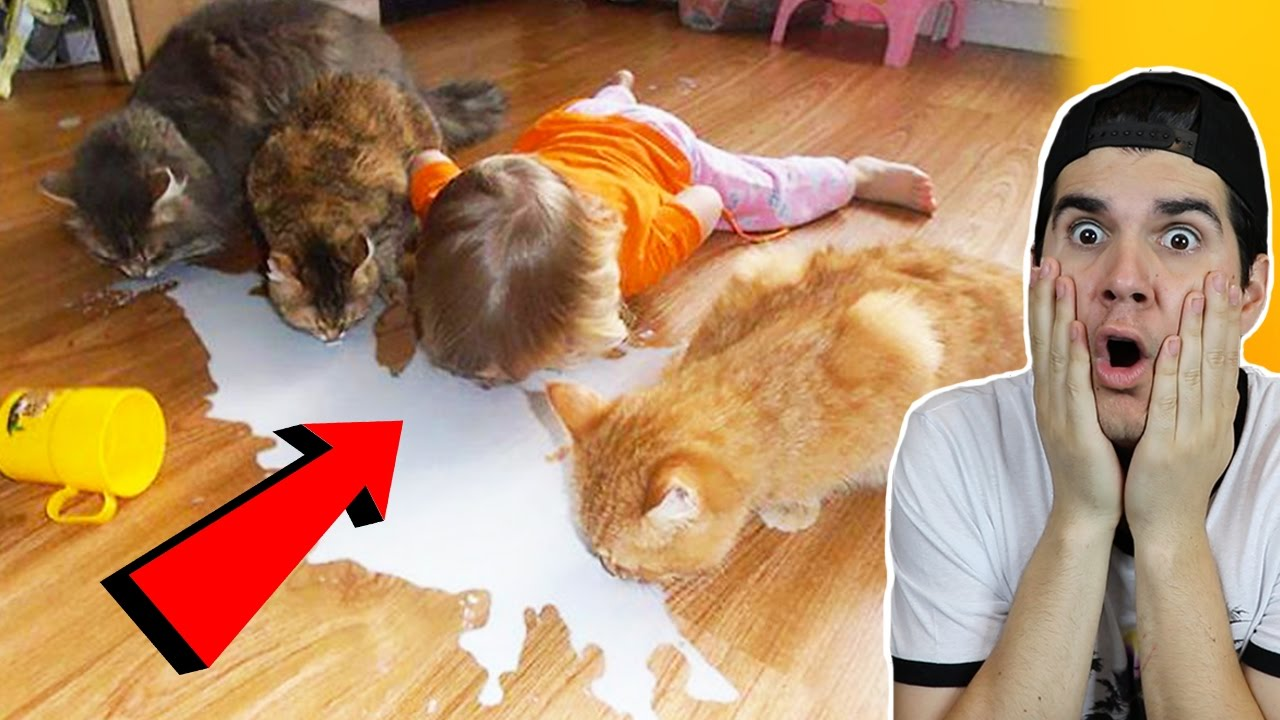 reasons-why-you-shouldn-t-leave-your-pets-with-kids