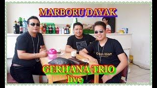 Marboru Dayak Gerhana Trio Live