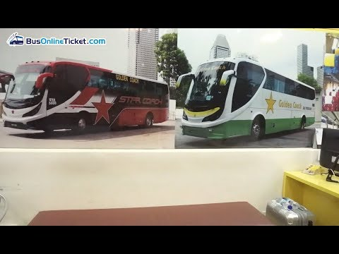 Golden Coach Express Bus From Singapore To Port Dickson, KL & More