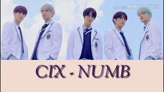 CIX (씨아이엑스) - NUMB (Lyrics Color)