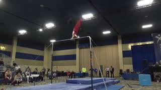 Yul Moldauer - High Bar - 2020 Winter Cup Senior Prelims