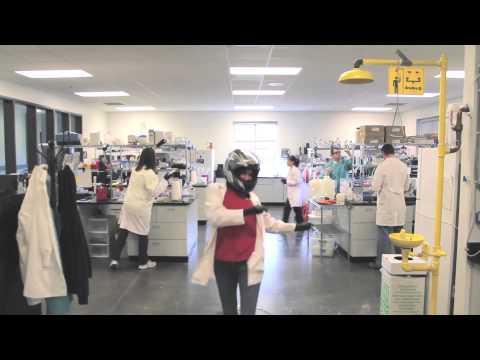 Harlem Shake IMMY Lab