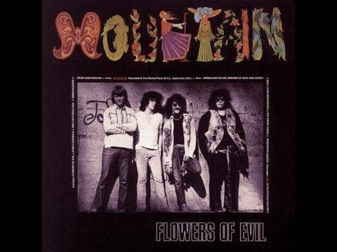Mountain - Flowers Of Evil (1971) - Full Album