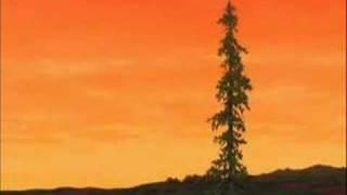 "Tierra de Osos - ""Yo veo"""