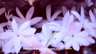 Ganesha Sthothram (ගණපති ස්තෝත්ර ගායනය - එවන් මඩුවල මහතා 0775434338)